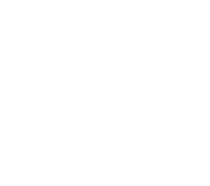 Netmediagroup